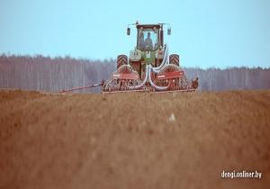 Приписки в сельском хозяйстве Беларуси достигли пика