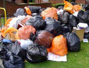 Спортклубам предложили освоить уборку мусора