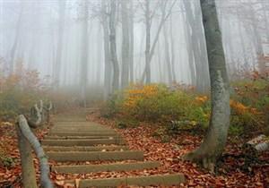 В Беларуси будет тепло до конца октября